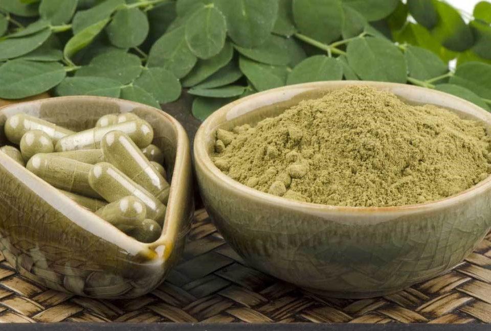 Oleifera leaf Powder